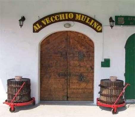 Musica in cantina: Foto dell'entrata della vecchia cantina adibita a taverna del Vecchio Mulino
